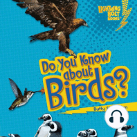 Do You Know about Birds?