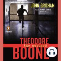 Theodore Boone, Book 3