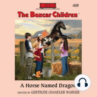 A Horse Named Dragon