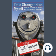I'm a Stranger Here Myself