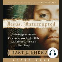 Jesus, Interrupted