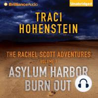 The Rachel Scott Adventures Vol 1