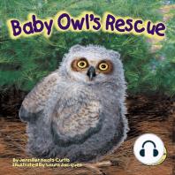 Baby Owl's Rescue