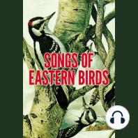 Songs of Eastern Birds