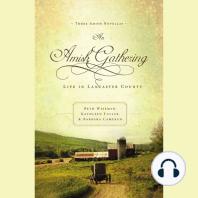 An Amish Gathering