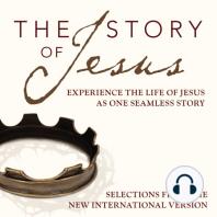 The Story of Jesus, NIV
