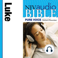 NIV Audio Bible, Pure Voice