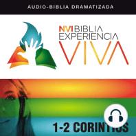 NVI Biblia Experiencia Viva