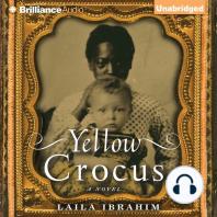 Yellow Crocus