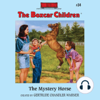 The Mystery Horse