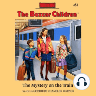 The Mystery on the Train