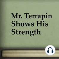 Mr. Terrapin Shows His Strength