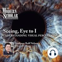 Seeing, Eye to I: Understanding Visual Perception