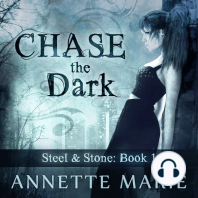 Chase the Dark