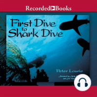 First Dive to Shark Dive