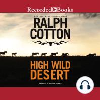 High Wild Desert