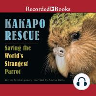 Kakapo Rescue: Saving the World's Strangest Parrot