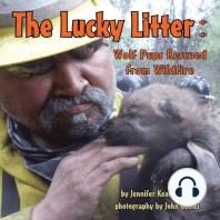 The Lucky Litter