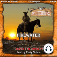 Firewater (Wilderness, 39)