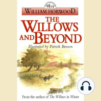 The Willows and Beyond