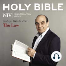 NIV Holy Bible: The Law
