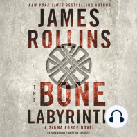The Bone Labyrinth