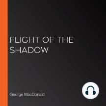 Flight of the Shadow