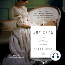 Amy Snow: A Novel