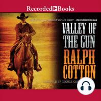 Valley of the Gun