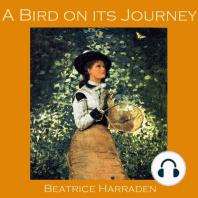 A Bird on its Journey