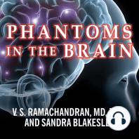 Phantoms in the Brain