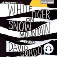 White Tiger on Snow Mountain