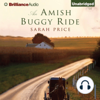An Amish Buggy Ride
