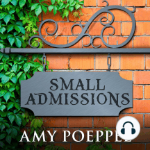 Small Admissions: A Novel