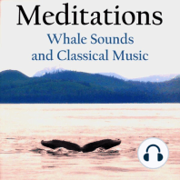 Meditations – Whale Sounds and Classical Music