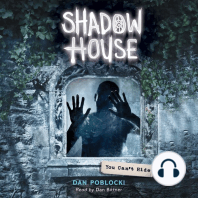 Shadow House #2