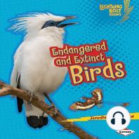 Endangered and Extinct Birds