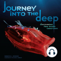 Journey into the Deep