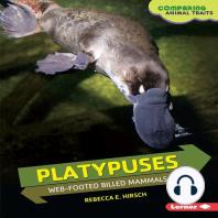 Platypuses