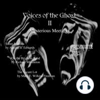 Voices of the Ghost II: Mysterious Meetings