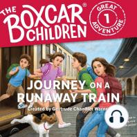Journey on a Runaway Train