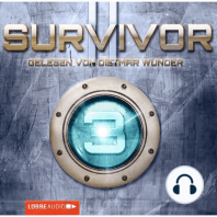 Survivor 2.03 (DEU) - Gestrandet