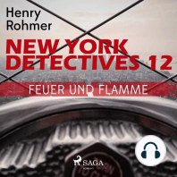 Feuer und Flamme - New York Detectives 12 (Ungekürzt)