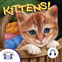 Know-It-Alls! Kittens
