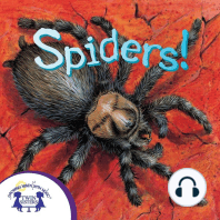Know-It-Alls! Spiders