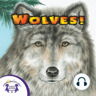 Know-It-Alls! Wolves