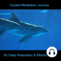 Guided Meditation Journey - Dolphins - Beach - Sea