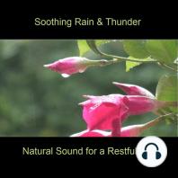 Soothing Rain & Thunder