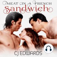 Meat in a French Sandwich