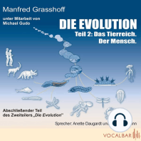 Die Evolution (Teil 2)